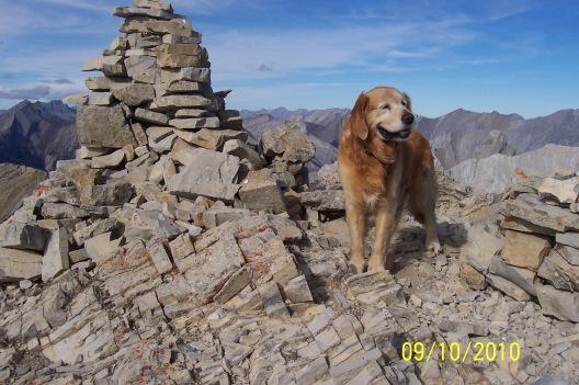 Buddy on Grotto