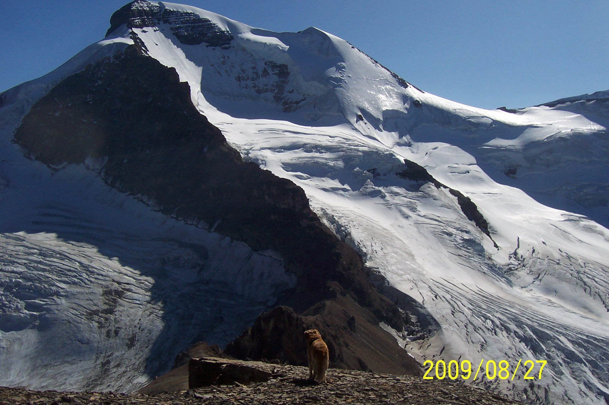 Boundary Peak & Mt Athabasca Aug 09 075