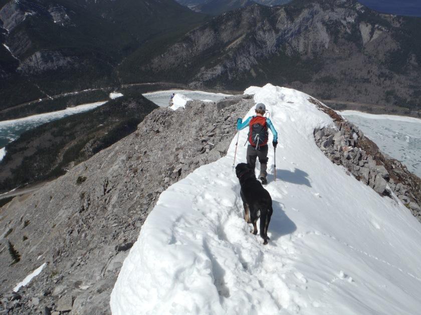 Kona Baldy ridge descent May 2018